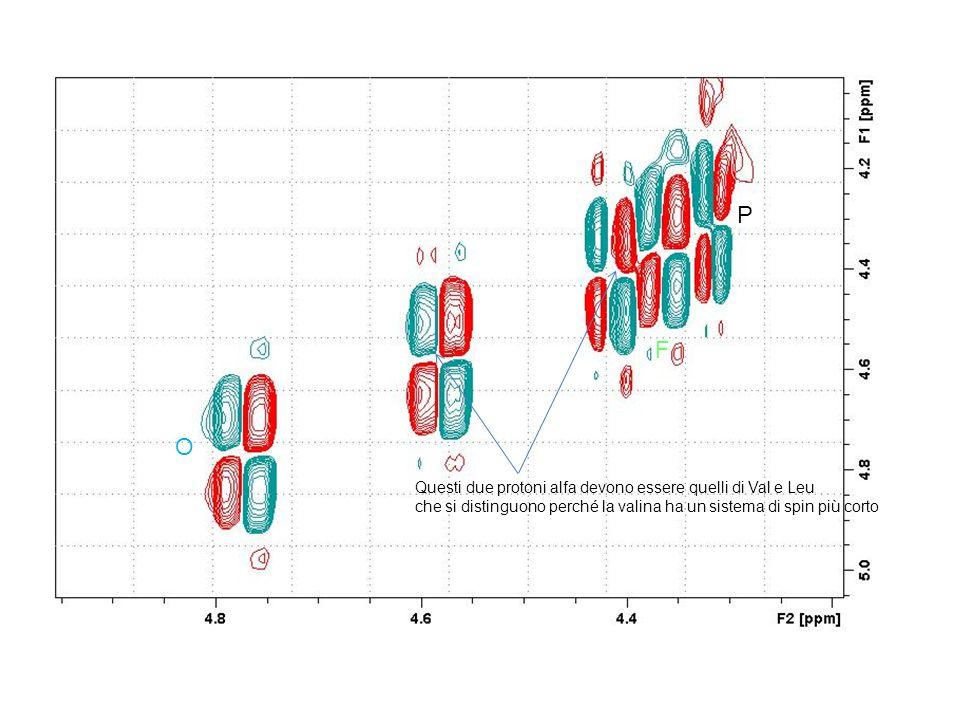 P O Questi due protoni alfa devono essere quelli di Val e Leu che si distinguono perché la valina ha un sistema di spin più corto F