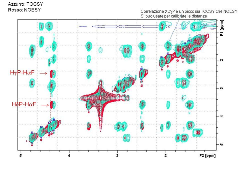 Correlazione 1 2 P è un picco sia TOCSY che NOESY Si può usare per calibrare le distanze Azzurro: TOCSY Rosso: NOESY H P-H F