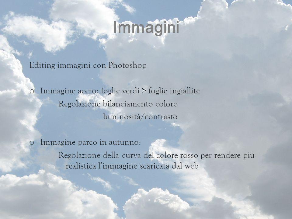 Immagini Editing immagini con Photoshop o Immagine acero: foglie verdi > foglie ingiallite Regolazione bilanciamento colore luminosità/contrasto o Imm