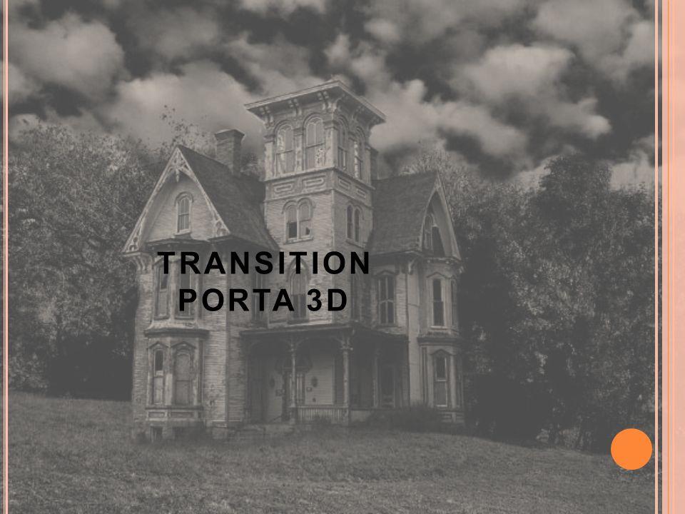 TRANSITION PORTA 3D