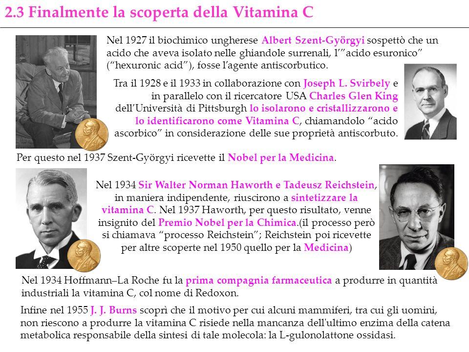 Infine nel 1955 J. J. Burns scoprì che il motivo per cui alcuni mammiferi, tra cui gli uomini, non riescono a produrre la vitamina C risiede nella man