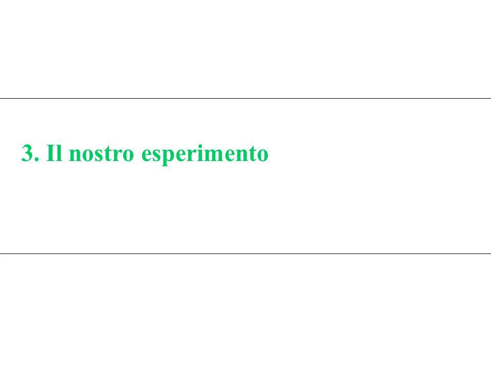 3. Il nostro esperimento