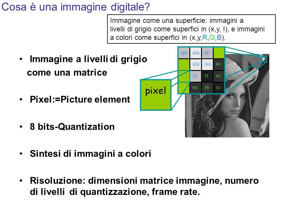Cosa è una immagine digitale? Immagine a livelli di grigio come una matrice Pixel:=Picture element 8 bits-Quantization Sintesi di immagini a colori Ri