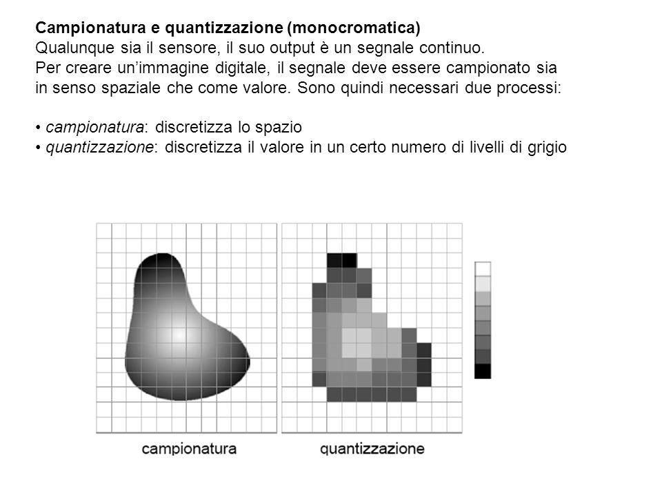 Campionatura e quantizzazione (monocromatica) Qualunque sia il sensore, il suo output è un segnale continuo. Per creare unimmagine digitale, il segnal