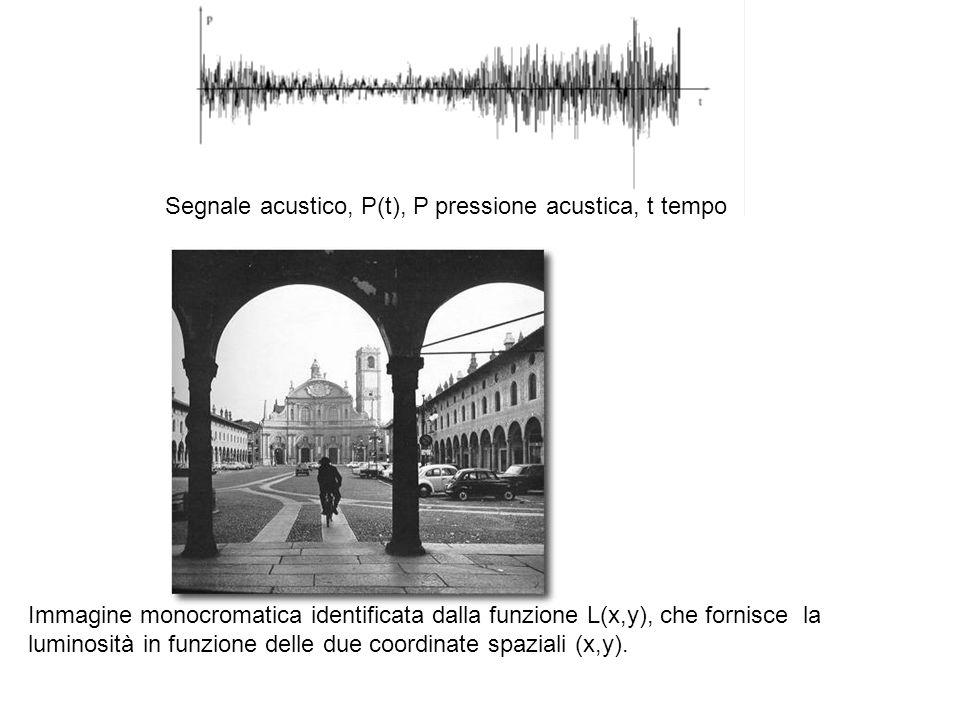 Segnale acustico, P(t), P pressione acustica, t tempo Immagine monocromatica identificata dalla funzione L(x,y), che fornisce la luminosità in funzion