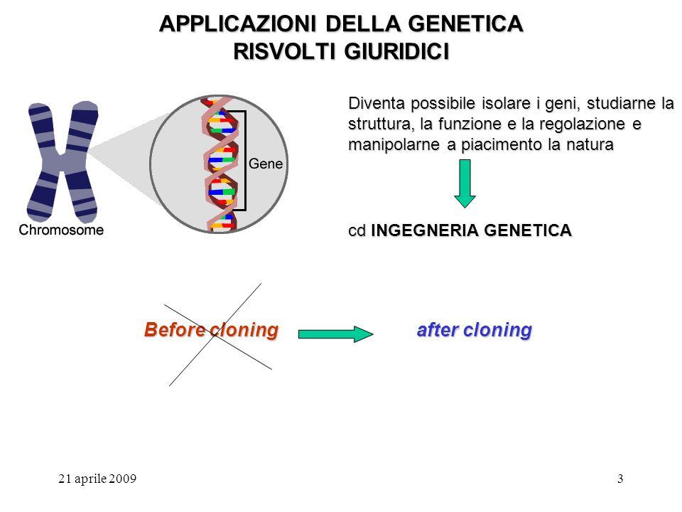 21 aprile 20093 APPLICAZIONI DELLA GENETICA RISVOLTI GIURIDICI Diventa possibile isolare i geni, studiarne la struttura, la funzione e la regolazione