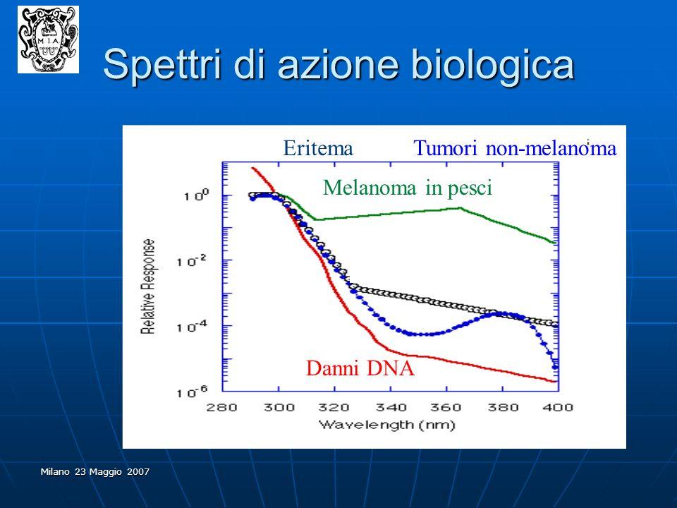 Milano 23 Maggio 2007 Spettri di azione biologica EritemaTumori non-melanoma Melanoma in pesci Danni DNA