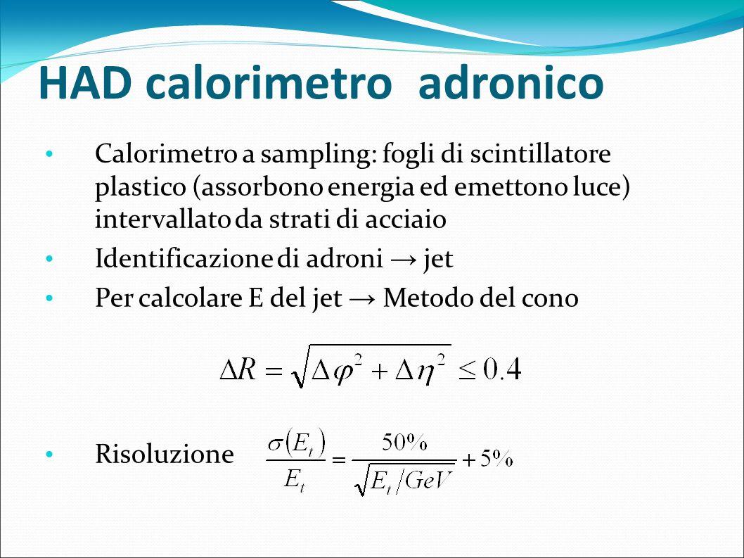 HAD calorimetro adronico Calorimetro a sampling: fogli di scintillatore plastico (assorbono energia ed emettono luce) intervallato da strati di acciai