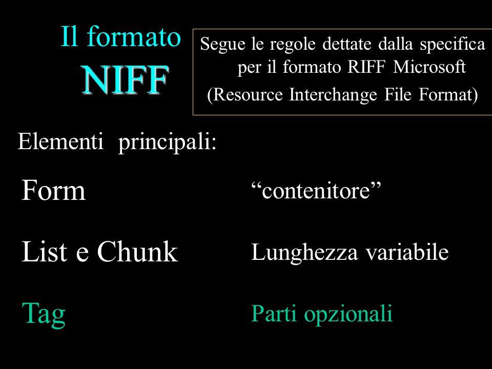 NIFF Il formato NIFF Segue le regole dettate dalla specifica per il formato RIFF Microsoft (Resource Interchange File Format) Form contenitore principale Allinizio del file, contiene tutti gli altri list e chunk RIFF/ RIFX Dimensione dati in Form Tipo di file (NIFF) DATI (list & Chunk)