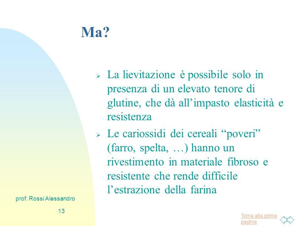 Torna alla prima pagina prof. Rossi Alessandro 12 Perché il pane.