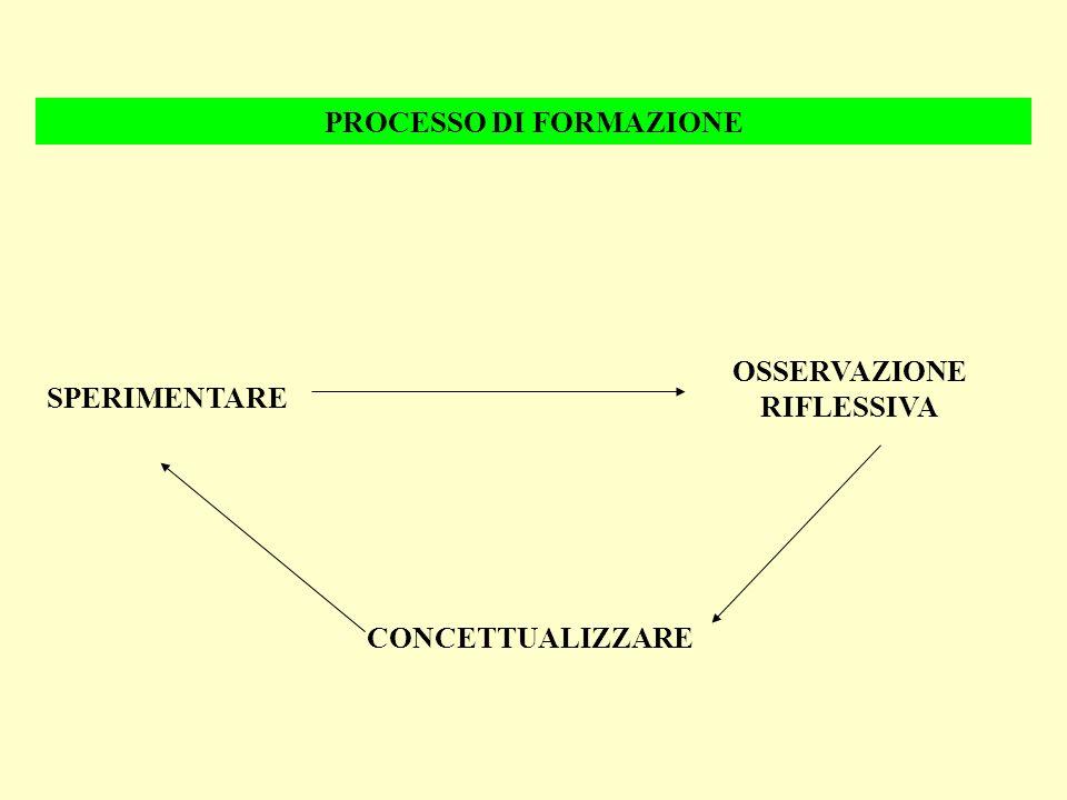 PROCESSO DI FORMAZIONE OSSERVAZIONE RIFLESSIVA SPERIMENTARE CONCETTUALIZZARE