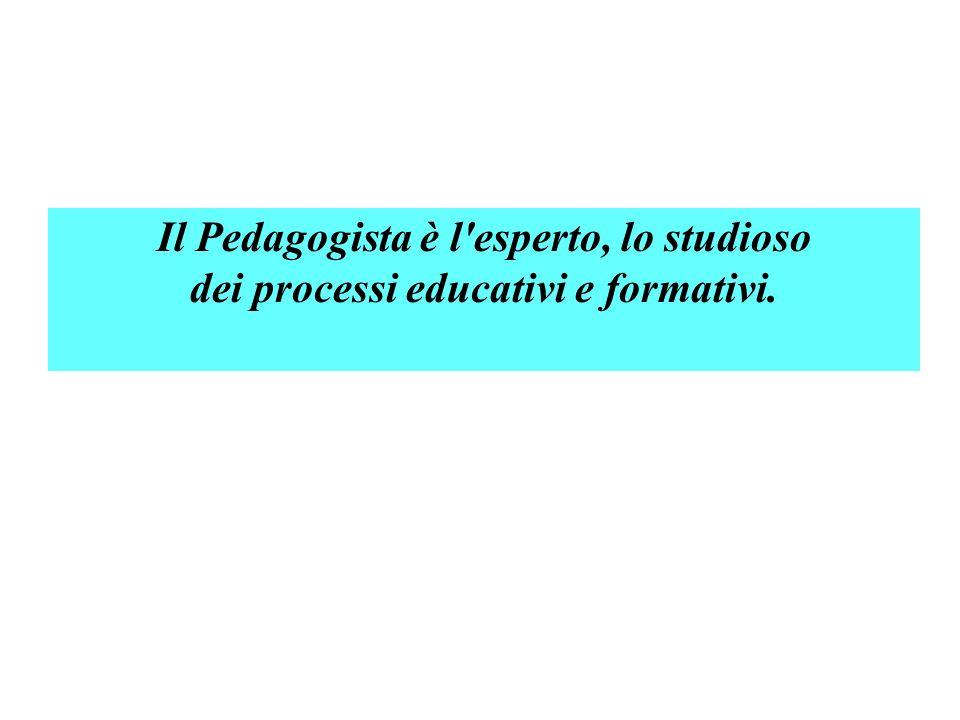 Il Pedagogista è l'esperto, lo studioso dei processi educativi e formativi.