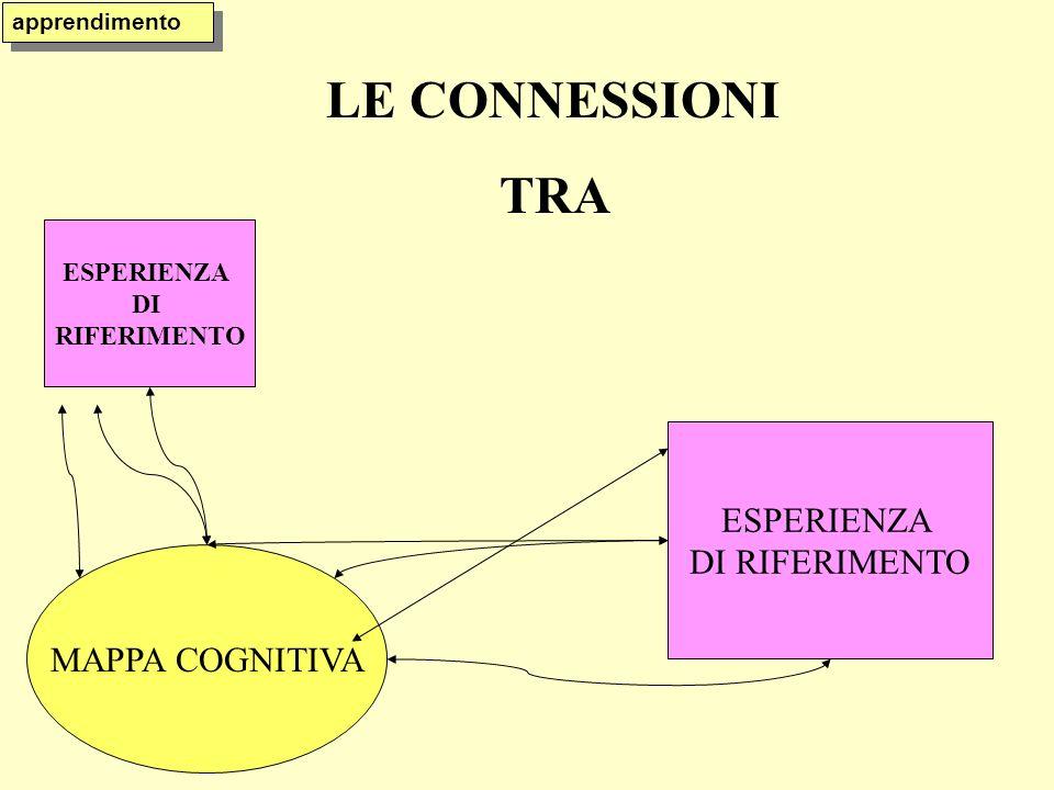 LE CONNESSIONI TRA MAPPA COGNITIVA ESPERIENZA DI RIFERIMENTO ESPERIENZA DI RIFERIMENTO apprendimento