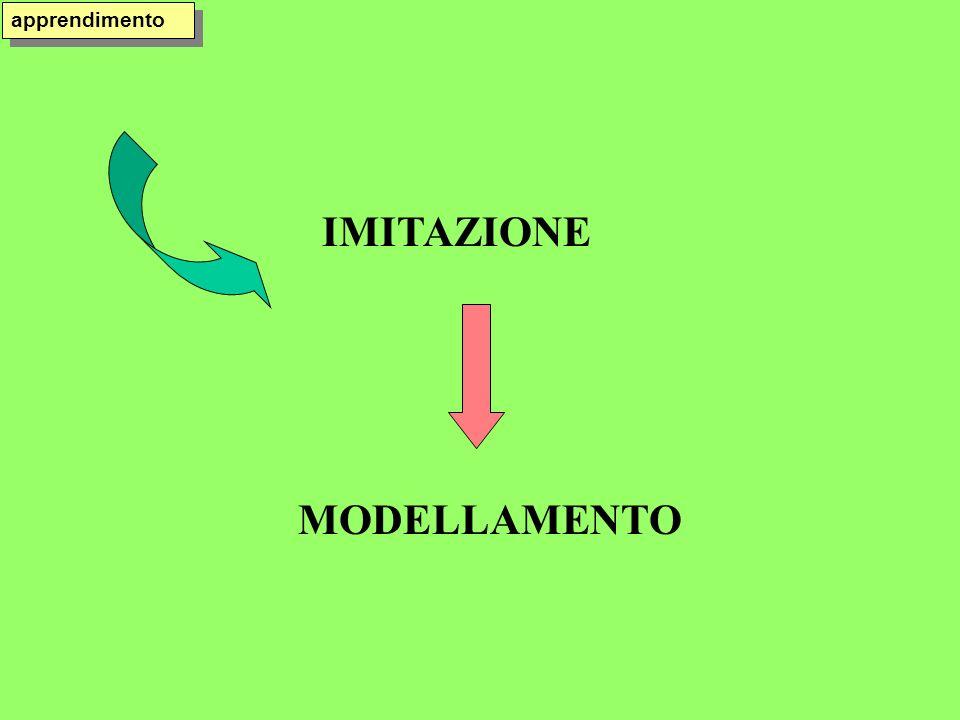 IMITAZIONE MODELLAMENTO apprendimento