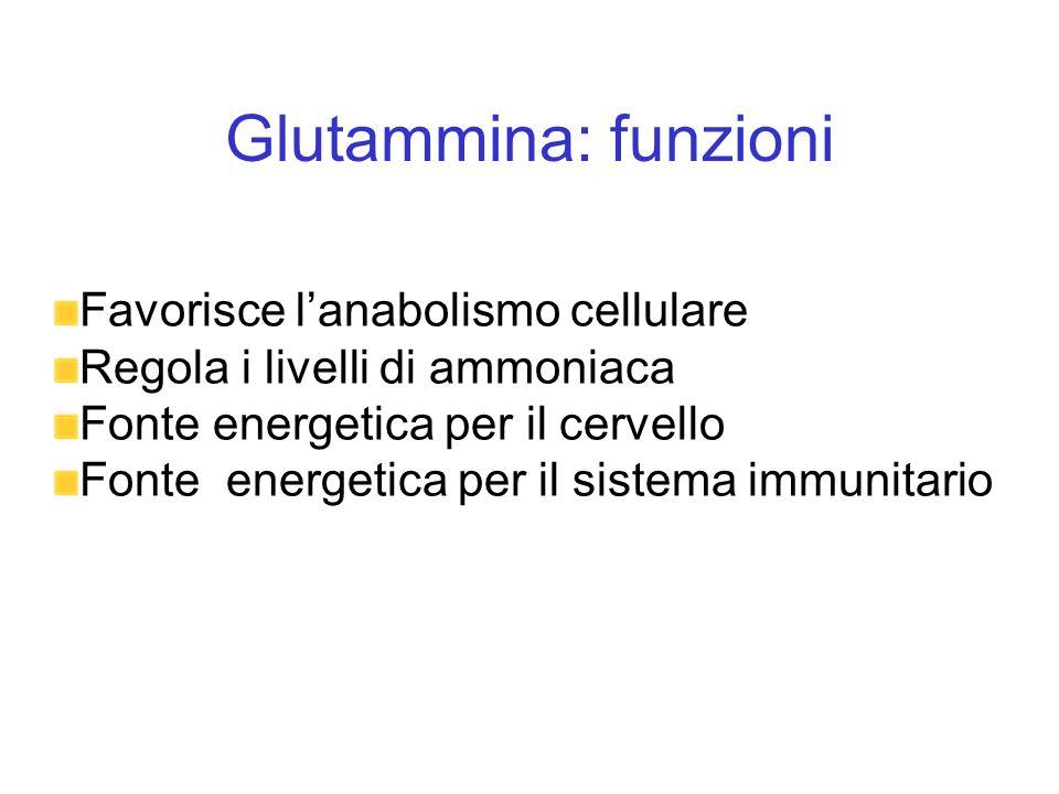 Glutammina: funzioni Favorisce lanabolismo cellulare Regola i livelli di ammoniaca Fonte energetica per il cervello Fonte energetica per il sistema im