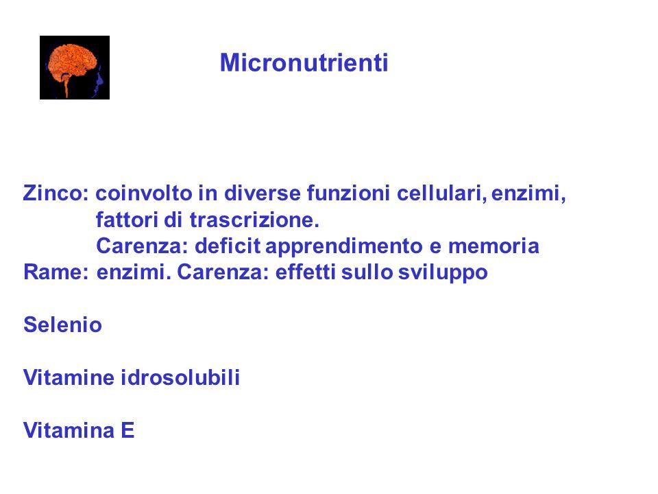 Micronutrienti Zinco: coinvolto in diverse funzioni cellulari, enzimi, fattori di trascrizione. Carenza: deficit apprendimento e memoria Rame: enzimi.
