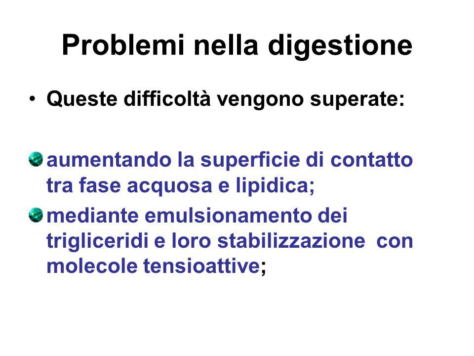 Problemi nella digestione Queste difficoltà vengono superate: aumentando la superficie di contatto tra fase acquosa e lipidica; mediante emulsionament
