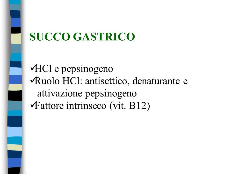 SUCCO GASTRICO HCl e pepsinogeno Ruolo HCl: antisettico, denaturante e attivazione pepsinogeno Fattore intrinseco (vit.
