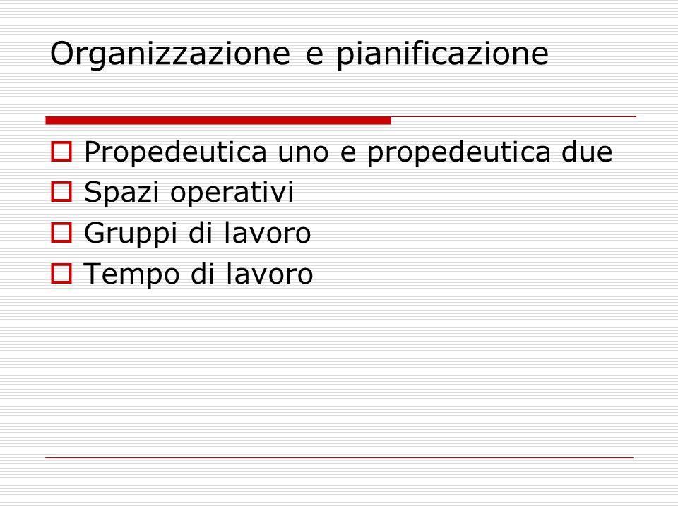 Organizzazione e pianificazione Propedeutica uno e propedeutica due Spazi operativi Gruppi di lavoro Tempo di lavoro