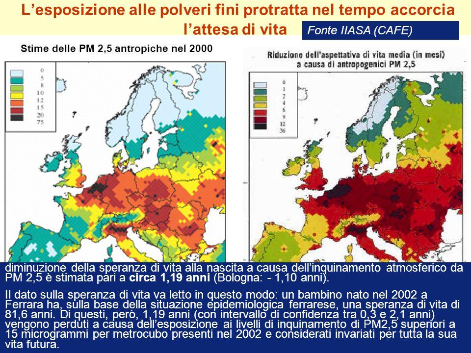 Lesposizione alle polveri fini protratta nel tempo accorcia lattesa di vita Stime delle PM 2,5 antropiche nel 2000 Fonte IIASA (CAFE) diminuzione dell