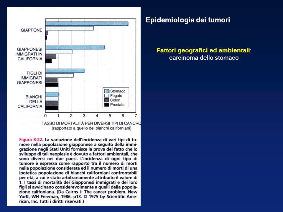 Fattori geografici ed ambientali Fattori geografici ed ambientali: carcinoma dello stomaco Epidemiologia dei tumori