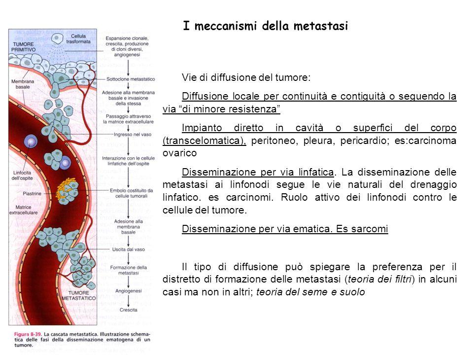 I meccanismi della metastasi Vie di diffusione del tumore: Diffusione locale per continuità e contiguità o seguendo la via di minore resistenza Impian