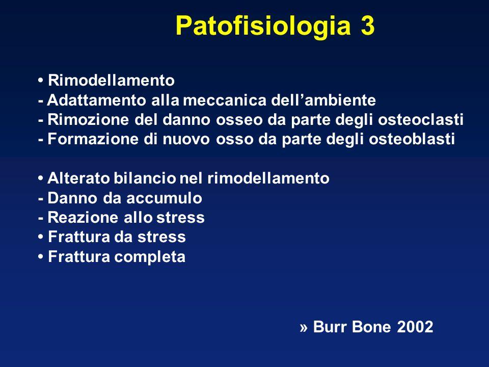 Patofisiologia 3 Rimodellamento - Adattamento alla meccanica dellambiente - Rimozione del danno osseo da parte degli osteoclasti - Formazione di nuovo osso da parte degli osteoblasti Alterato bilancio nel rimodellamento - Danno da accumulo - Reazione allo stress Frattura da stress Frattura completa » Burr Bone 2002