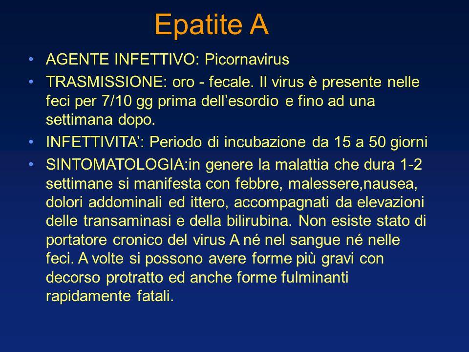Epatite A AGENTE INFETTIVO: Picornavirus TRASMISSIONE: oro - fecale. Il virus è presente nelle feci per 7/10 gg prima dellesordio e fino ad una settim