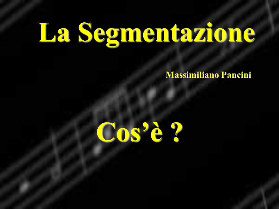 La Segmentazione Massimiliano Pancini Cosè ?