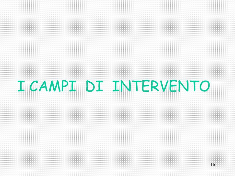 16 I CAMPI DI INTERVENTO