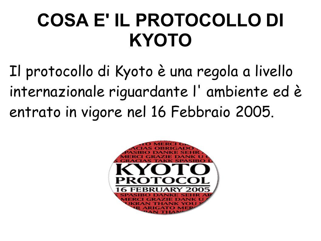 DI CHE COSA PARLA Il protocollo di Kyoto prevede delle riduzioni di CO 2 nell ambiente per i paesi industrializzati per ridurre il riscaldamento globale.