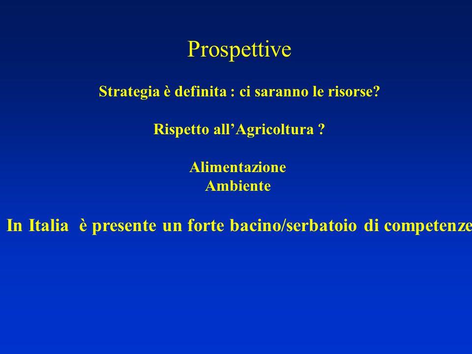 Prospettive Strategia è definita : ci saranno le risorse? Rispetto allAgricoltura ? Alimentazione Ambiente In Italia è presente un forte bacino/serbat
