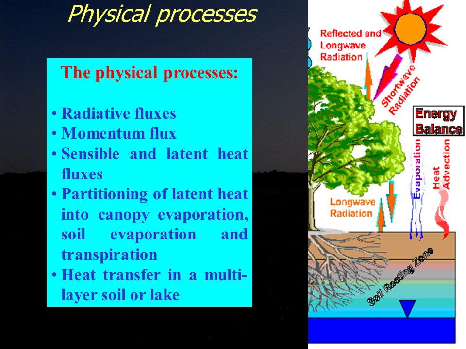 7 The physical processes: Radiative fluxes Momentum flux Sensible and latent heat fluxes Partitioning of latent heat into canopy evaporation, soil evaporation and transpiration Heat transfer in a multi- layer soil or lake Physical processes