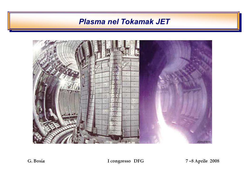 G. Bosia I congresso DFG 7 –8 Aprile 2008 Plasma nel Tokamak JET