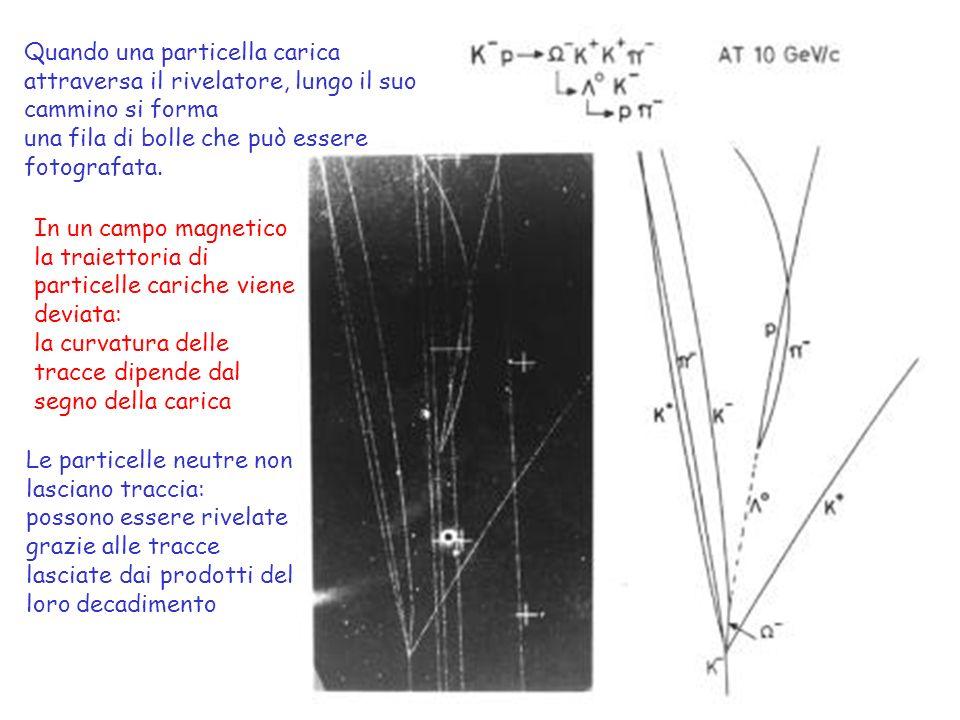Quando una particella carica attraversa il rivelatore, lungo il suo cammino si forma una fila di bolle che può essere fotografata.