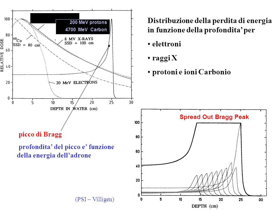 (PSI – Villigen) 200 MeV protons 4700 MeV Carbon Spread Out Bragg Peak Distribuzione della perdita di energia in funzione della profondita per elettro