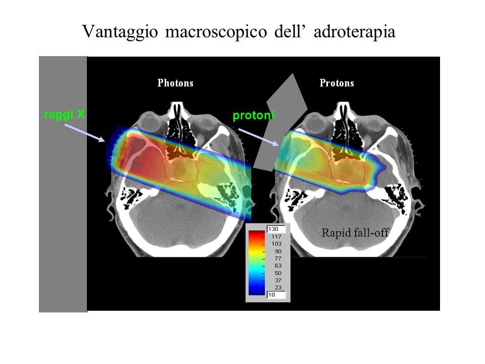 Vantaggio macroscopico dell adroterapia Rapid fall-off raggi X protoni