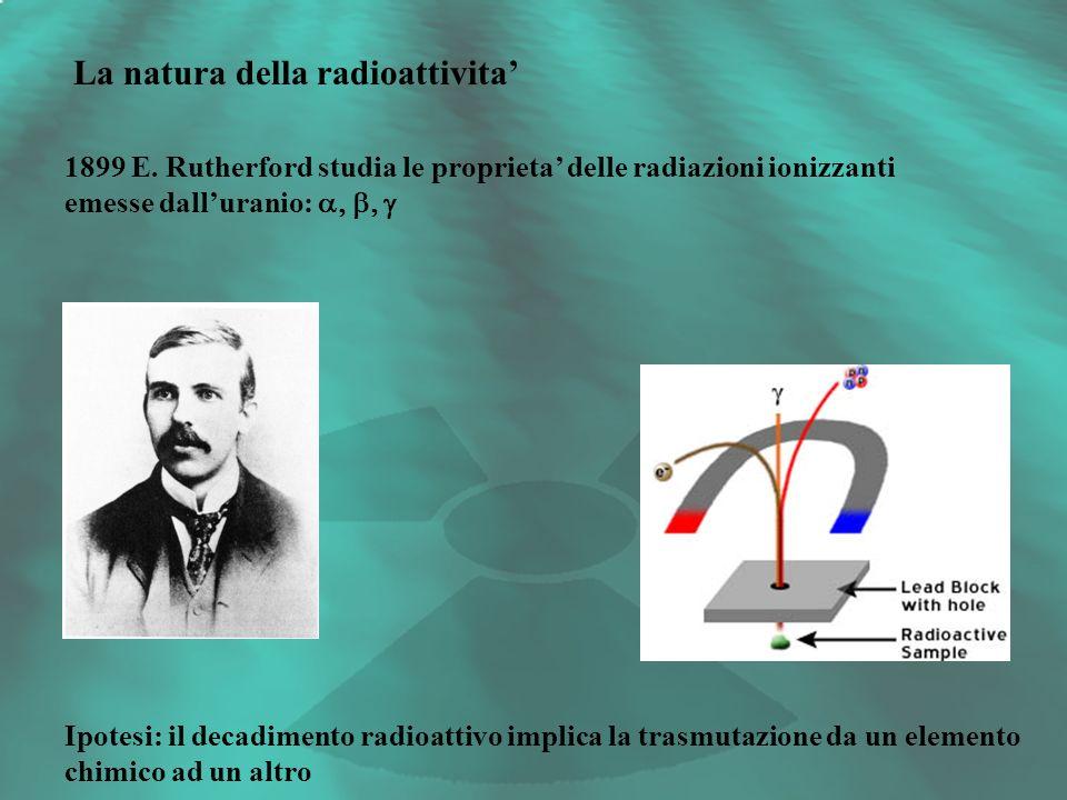 La natura della radioattivita 1899 E. Rutherford studia le proprieta delle radiazioni ionizzanti emesse dalluranio: Ipotesi: il decadimento radioattiv