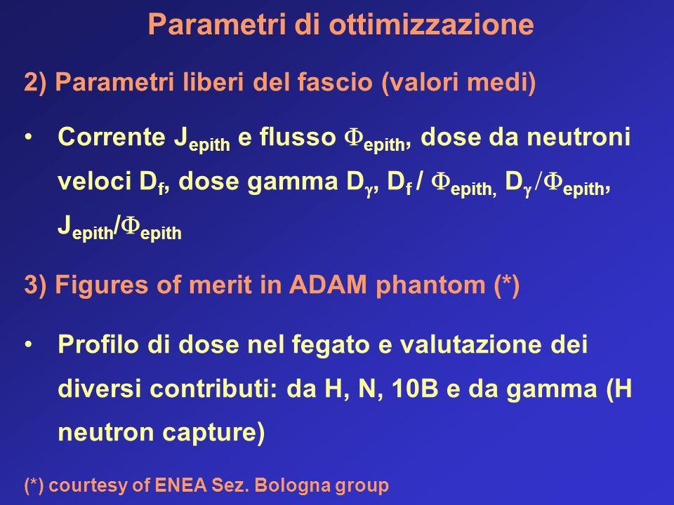 Parametri di ottimizzazione 2) Parametri liberi del fascio (valori medi) Corrente J epith e flusso epith, dose da neutroni veloci D f, dose gamma D, D f / epith, D epith, J epith / epith 3) Figures of merit in ADAM phantom (*) Profilo di dose nel fegato e valutazione dei diversi contributi: da H, N, 10B e da gamma (H neutron capture) (*) courtesy of ENEA Sez.