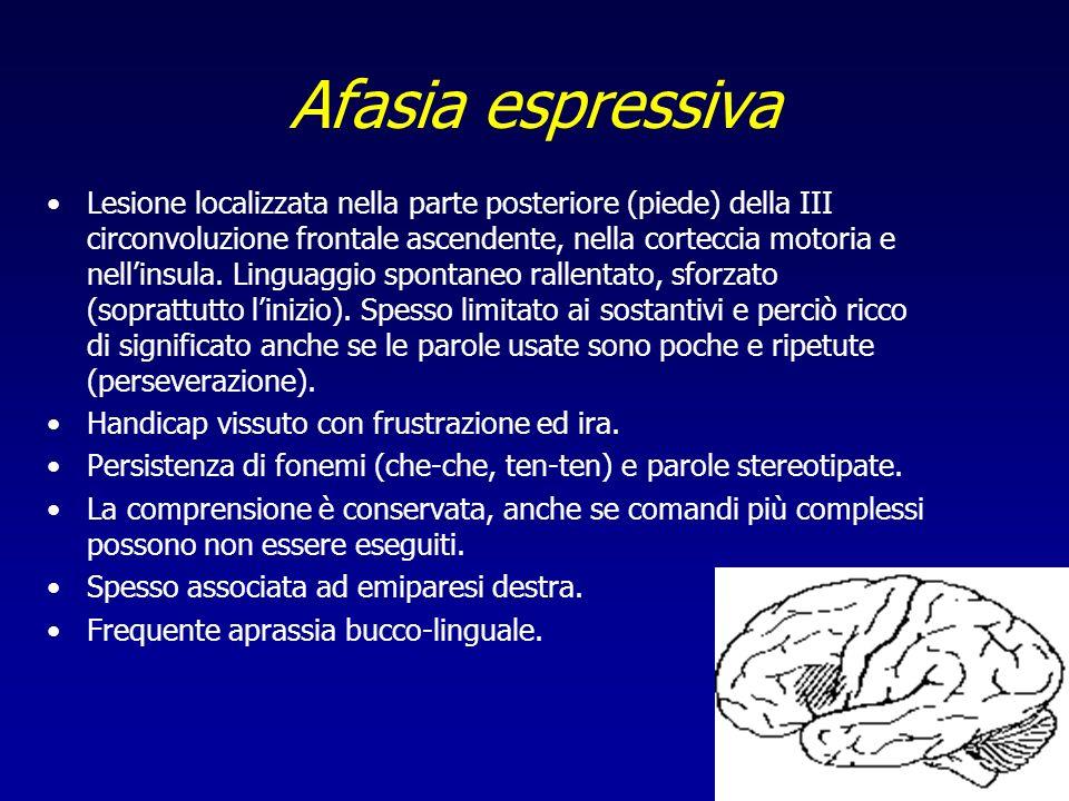 Afasia espressiva Lesione localizzata nella parte posteriore (piede) della III circonvoluzione frontale ascendente, nella corteccia motoria e nellinsu