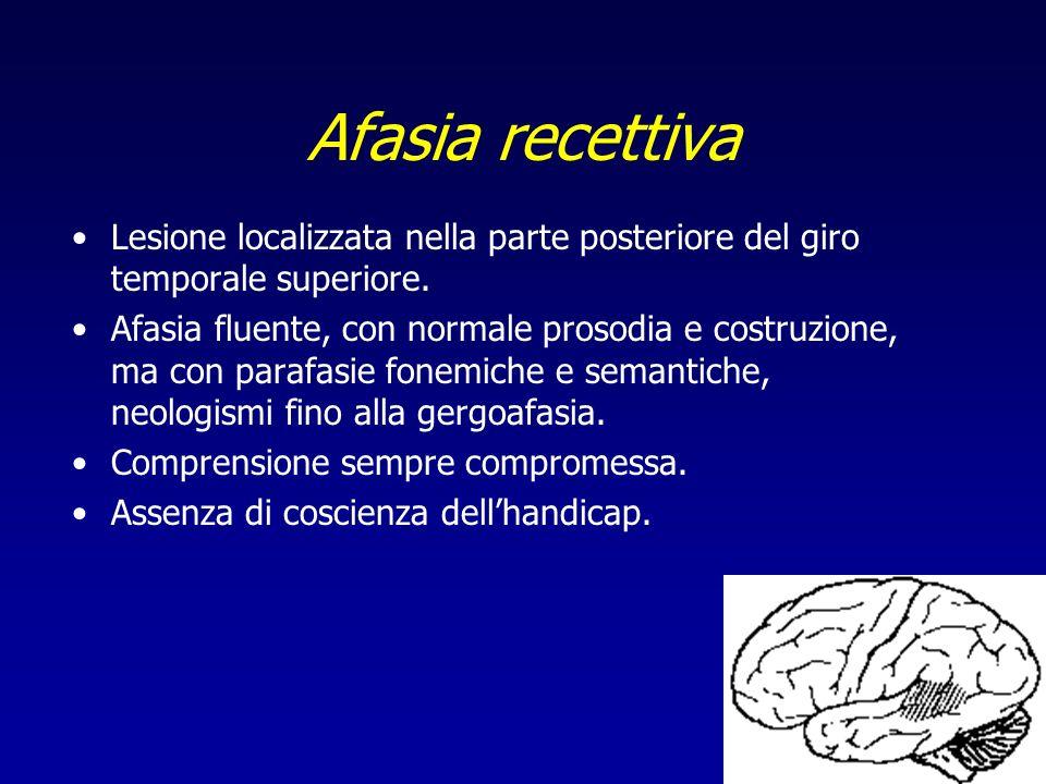 Afasia recettiva Lesione localizzata nella parte posteriore del giro temporale superiore. Afasia fluente, con normale prosodia e costruzione, ma con p