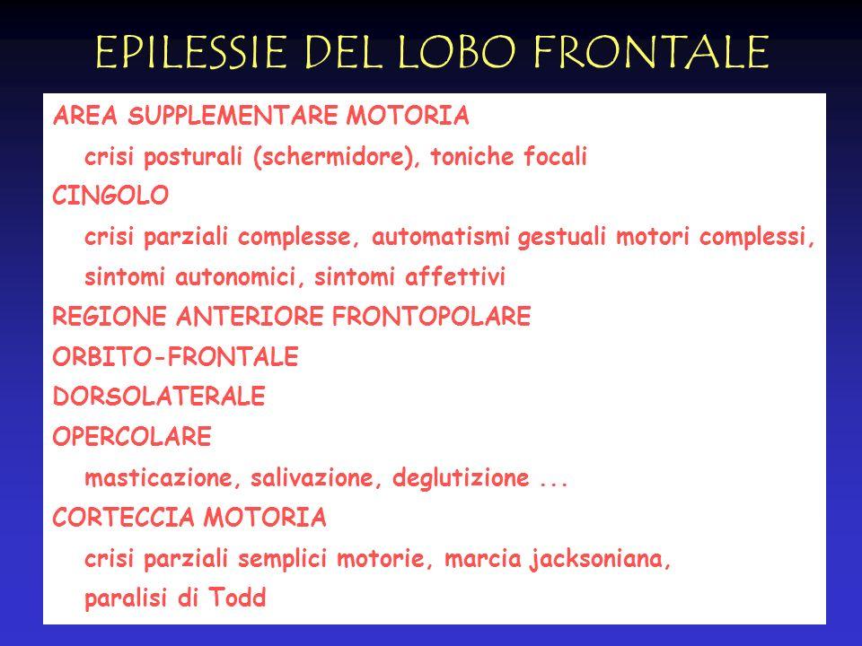 EPILESSIE DEL LOBO FRONTALE AREA SUPPLEMENTARE MOTORIA crisi posturali (schermidore), toniche focali CINGOLO crisi parziali complesse, automatismi ges