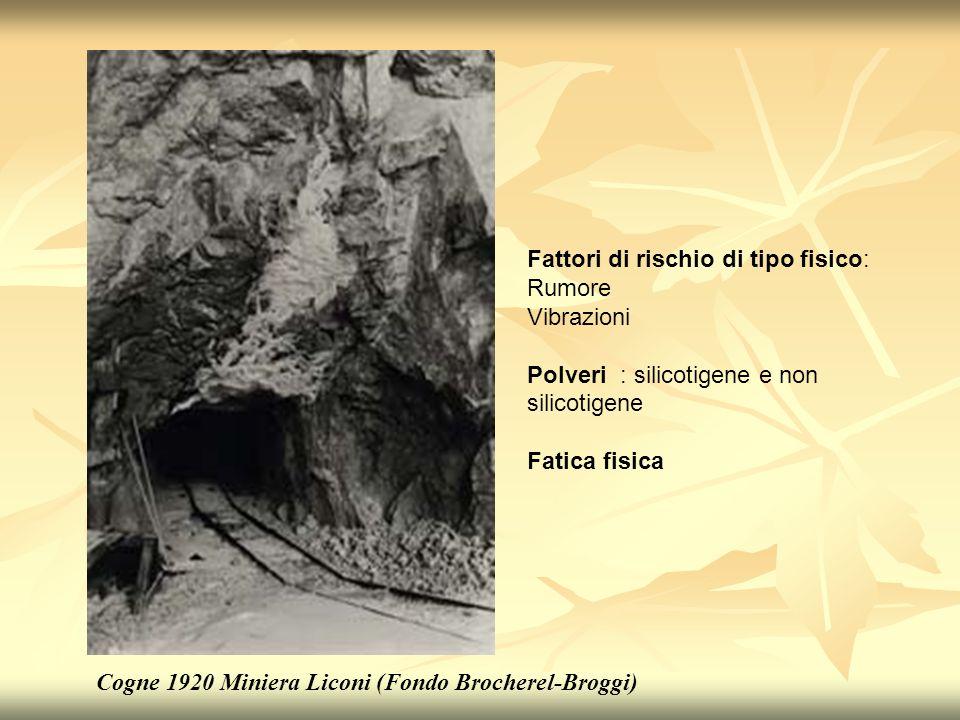 Cogne 1920 Miniera Liconi (Fondo Brocherel-Broggi) Fattori di rischio di tipo fisico: Rumore Vibrazioni Polveri : silicotigene e non silicotigene Fati