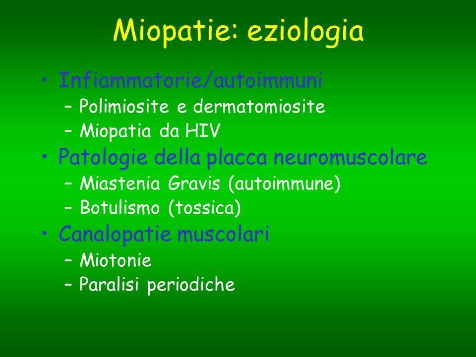 Miopatie: eziologia Infiammatorie/autoimmuni –Polimiosite e dermatomiosite –Miopatia da HIV Patologie della placca neuromuscolare –Miastenia Gravis (a