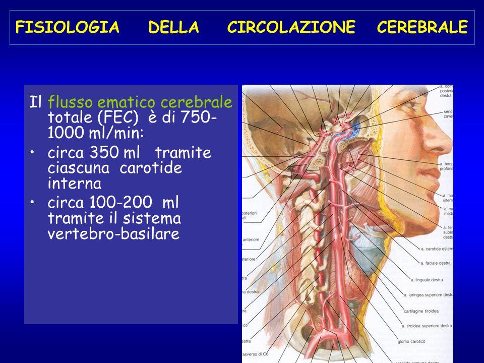 FISIOLOGIA DELLA CIRCOLAZIONE CEREBRALE Il flusso ematico cerebrale totale (FEC) è di 750- 1000 ml/min: circa 350 ml tramite ciascuna carotide interna