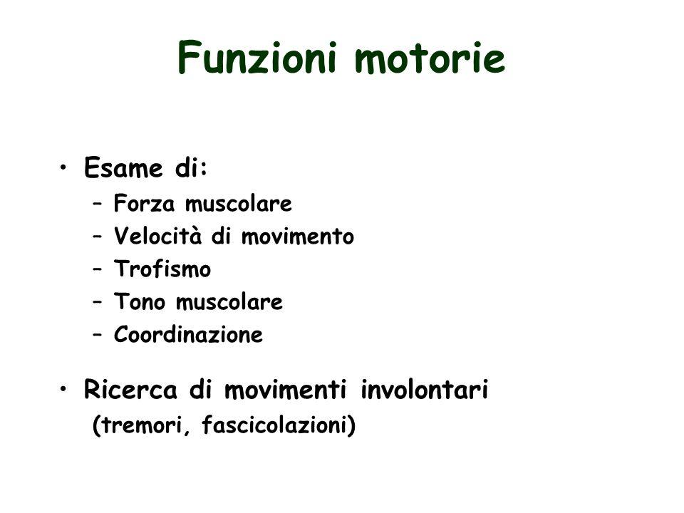 Funzioni motorie Esame di: –Forza muscolare –Velocità di movimento –Trofismo –Tono muscolare –Coordinazione Ricerca di movimenti involontari (tremori,