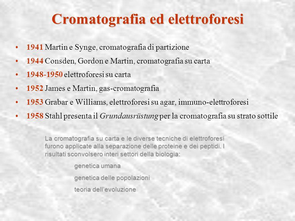 Mutazione e travestimento, 1945-1975 Cromatografia ed elettroforesi La trasformazione del laboratorio organicolaboratorio organico La biologia molecol