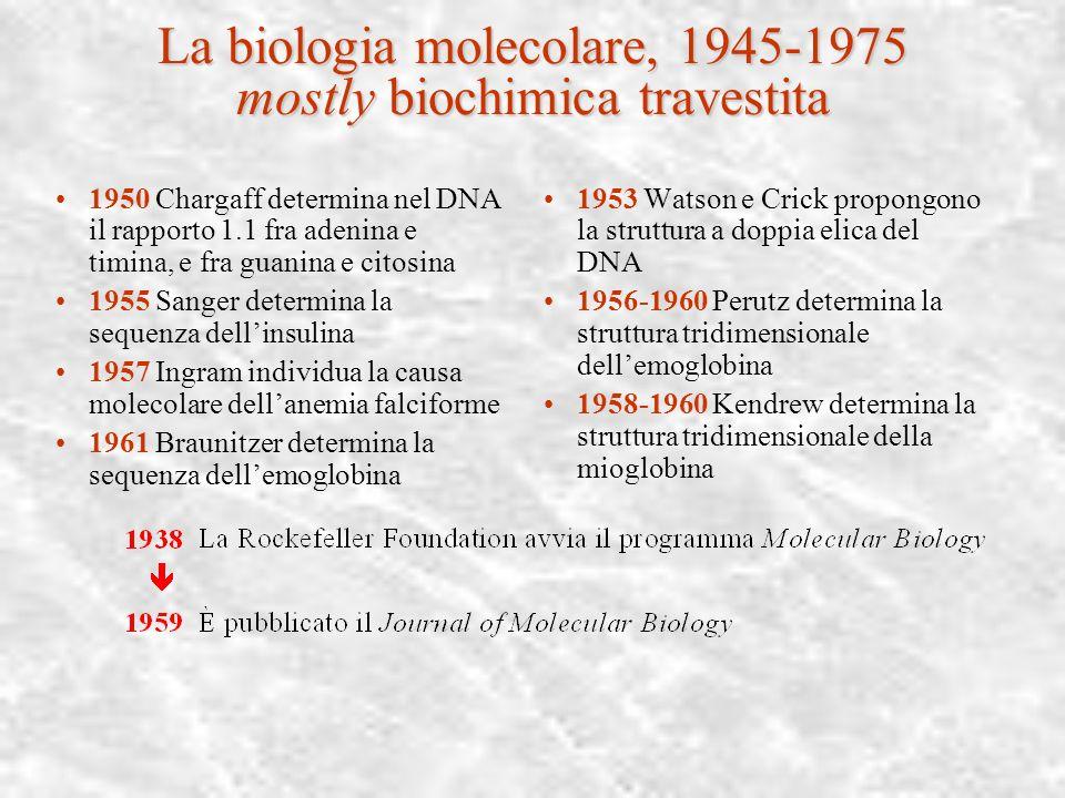 La trasformazione del laboratorio organico 1945-1975 In una generazione, dopo la seconda guerra mondiale, sono stati introdotti strumenti che hanno mo