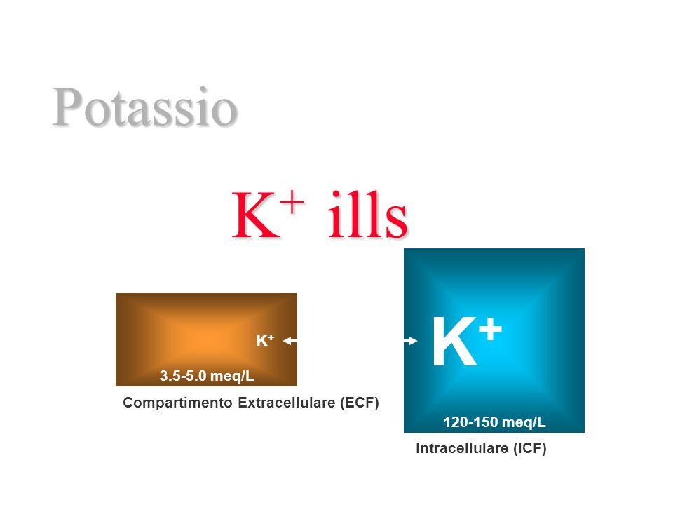 Potassio K+K+K+K+ills Intracellulare (ICF) Compartimento Extracellulare (ECF) Internal Balance K+K+ K+K+ External Balance Excretion 3.5-5.0 meq/L 120-150 meq/L