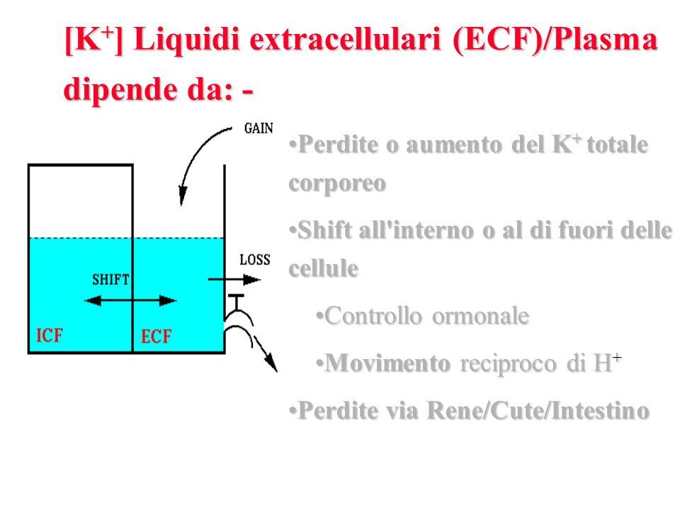 Perdite o aumento del K + totale corporeoPerdite o aumento del K + totale corporeo Shift all interno o al di fuori delle celluleShift all interno o al di fuori delle cellule Controllo ormonaleControllo ormonale Movimento reciproco di H +Movimento reciproco di H + Perdite via Rene/Cute/IntestinoPerdite via Rene/Cute/Intestino [K + ] Liquidi extracellulari (ECF)/Plasma dipende da: -